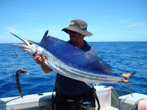 SBillspearfish